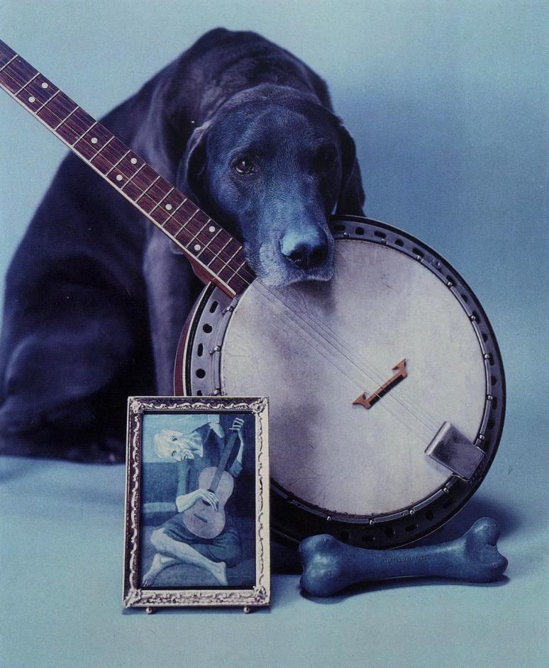 Wegman, Wm._Blue Period with Banjo, 1980